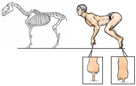 馬の骨とふんどし一丁の男