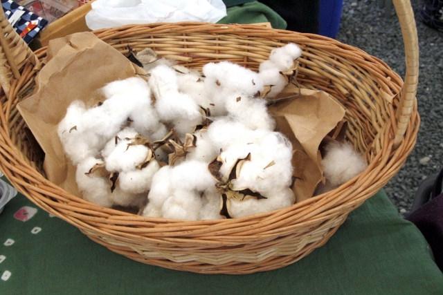 ふんどしの人気素材、肌触りの気持良い「綿」の魅力