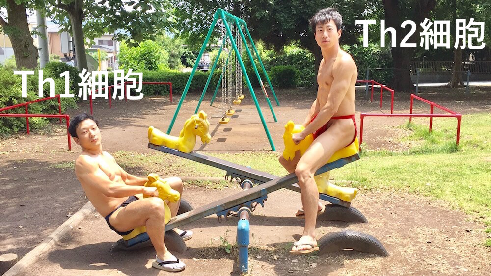 fundoshi-seesaw-1