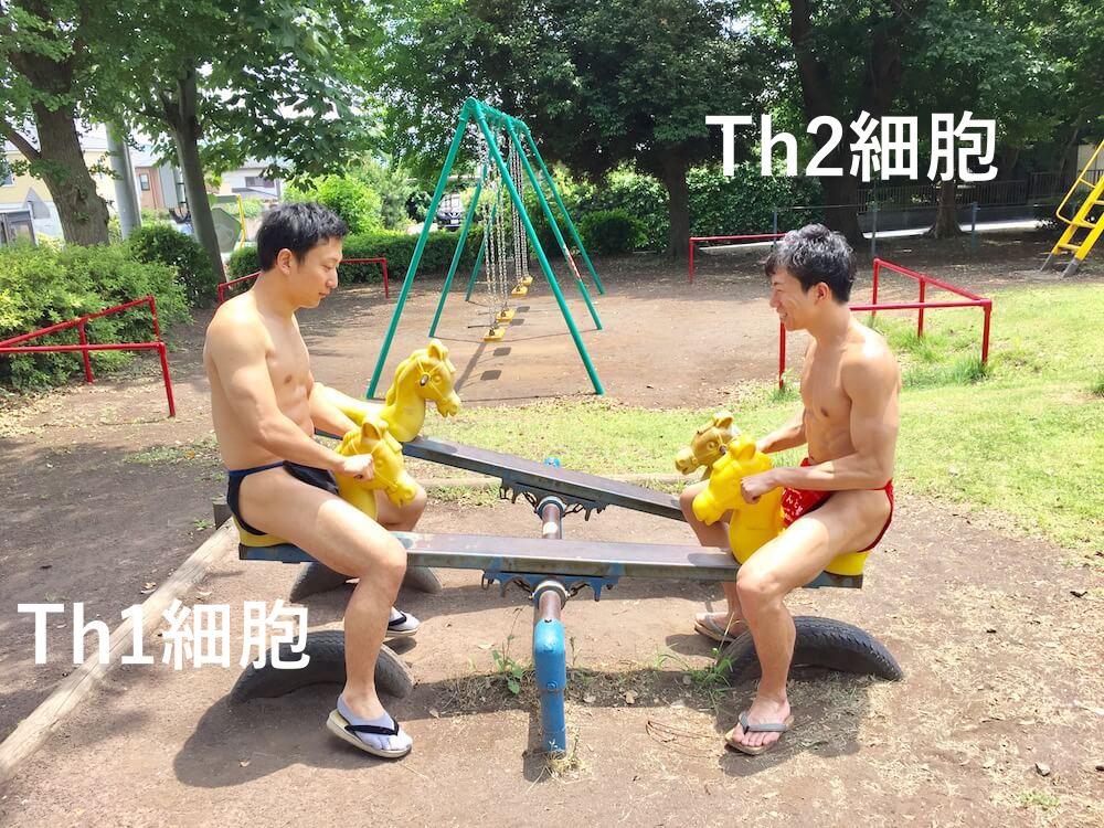 fundoshi-seesaw-3